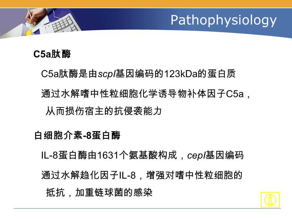 Pathophysiology C5a 肽酶 C5a 肽酶是由 scpI 基因编码的 123kDa 的蛋白质 通过水解嗜中性粒细胞化学诱导物补体因子 C5a , 从而损伤宿主的抗侵袭能力 白细胞介素 -8 蛋白酶 IL-8 蛋白酶由 1631 个氨基酸构成, cepI 基因编码 通过水解趋化因子 IL-8 ,增强对嗜中性粒细胞的 抵抗,加重链球菌的感染