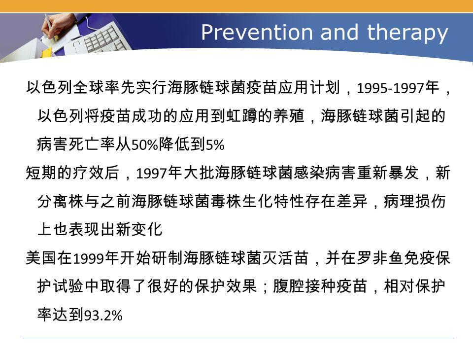 Prevention and therapy 以色列全球率先实行海豚链球菌疫苗应用计划, 1995-1997 年, 以色列将疫苗成功的应用到虹蹲的养殖,海豚链球菌引起的 病害死亡率从 50% 降低到 5% 短期的疗效后, 1997 年大批海豚链球菌感染病害重新暴发,新 分离株与之前海豚链球菌毒株生化特性存在差异,病理损伤 上也表现出新变化 美国在 1999 年开始研制海豚链球菌灭活苗,并在罗非鱼免疫保 护试验中取得了很好的保护效果;腹腔接种疫苗,相对保护 率达到 93.2%