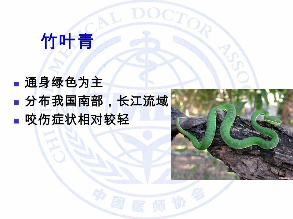 竹叶青 通身绿色为主 分布我国南部,长江流域 咬伤症状相对较轻