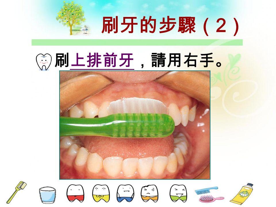 由右上頰側 開始,請用 右手 。 與齒面成 45°~60° , 兩顆兩顆來 回的刷。 刷牙的步驟 (1)