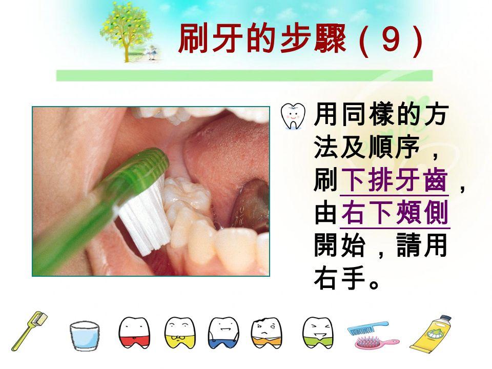 刷牙的步驟( 8 ) 刷右上咬合面。 到此刷牙是 由右邊開 始。也在右 邊結束。
