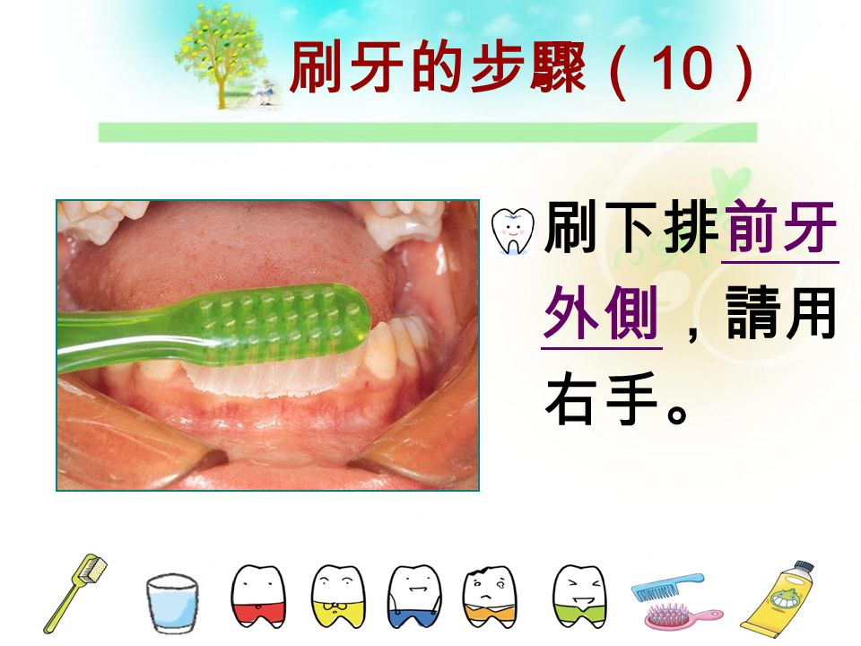 刷牙的步驟( 9 ) 用同樣的方 法及順序, 刷下排牙齒, 由右下頰側 開始,請用 右手。
