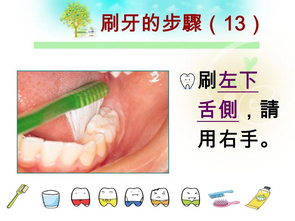 刷牙的步驟( 12 ) 刷左下咬 合面, 請用左手。