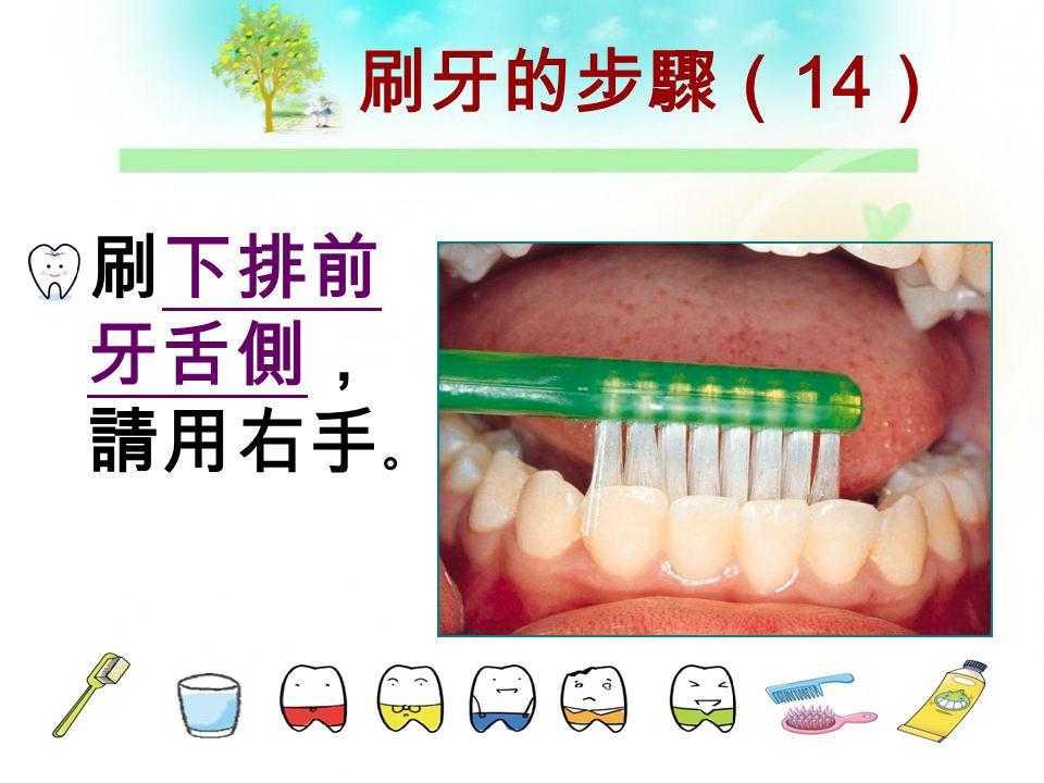 刷牙的步驟( 13 ) 刷左下 舌側,請 用右手。