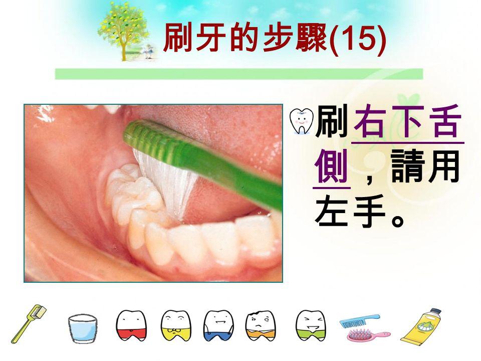 刷牙的步驟( 14 ) 刷下排前 牙舌側, 請用右手 。