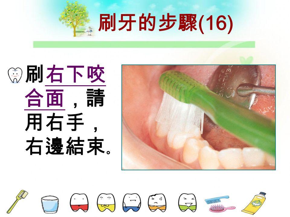 刷牙的步驟 (15) 刷右下舌 側,請用 左手。