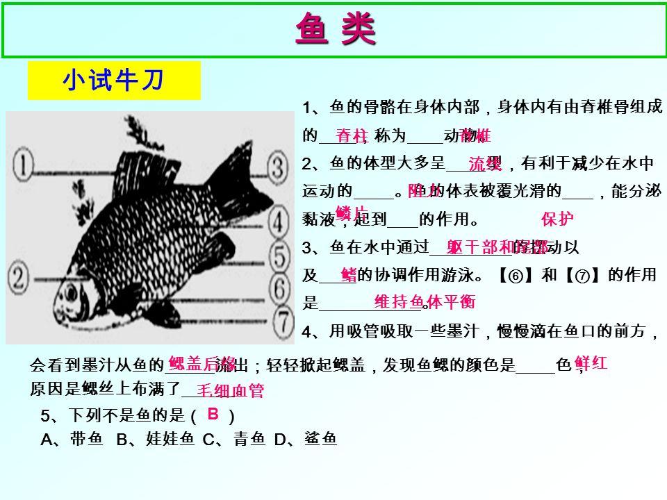 自主回顾一 鱼 类鱼 类鱼 类鱼 类 1 、鱼生活在什么样的环境中? 2 、鱼的身体分哪几部分? 体形怎样 .