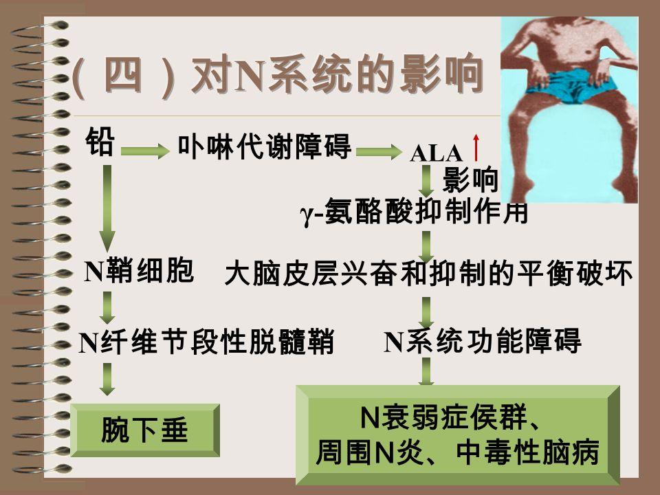 铅 血管痉挛 腹绞痛 铅容 N 麻痹 中毒性脑病
