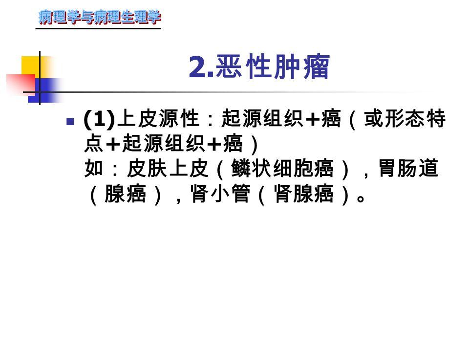 ( 二 ) 肿瘤的命名原则 1. 良性肿瘤 起源组织或细胞 + 瘤(如纤维瘤、软骨瘤) 或以 镜下结构 + 瘤,或 肉眼形状 + 瘤