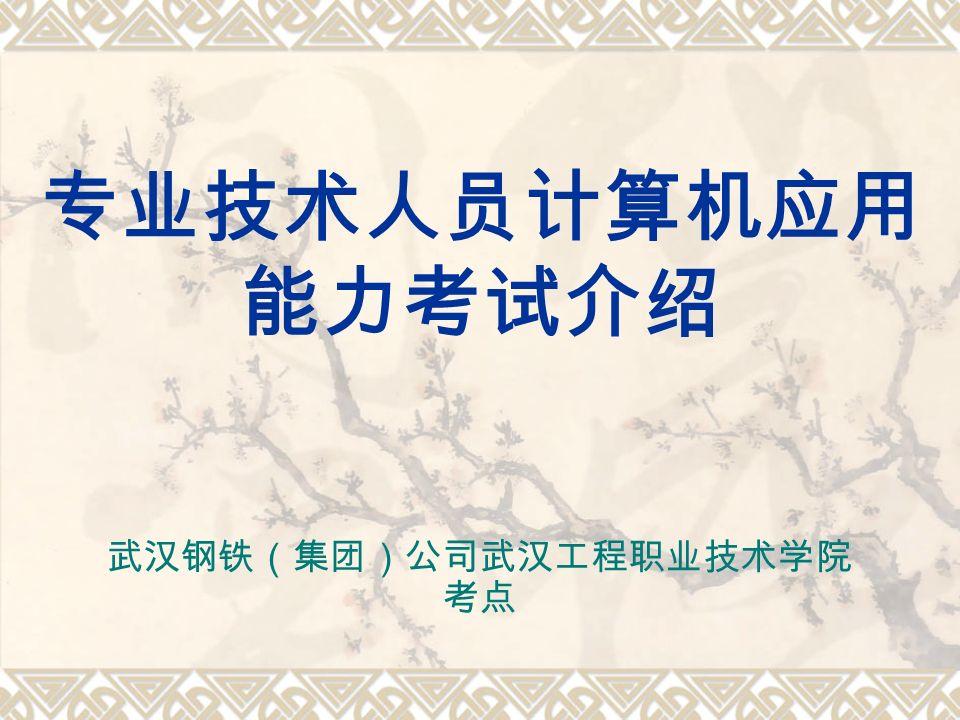 专业技术人员计算机应用 能力考试介绍 武汉钢铁(集团)公司武汉工程职业技术学院 考点