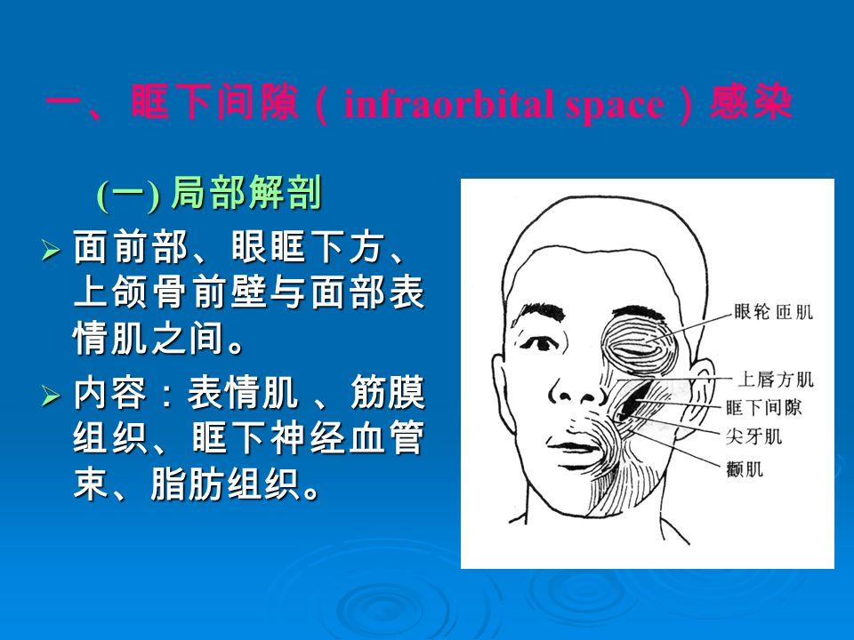 一、眶下间隙( infraorbital space )感染 ( 一 ) 局部解剖 ( 一 ) 局部解剖  面前部、眼眶下方、 上颌骨前壁与面部表 情肌之间。  内容:表情肌 、筋膜 组织、眶下神经血管 束、脂肪组织。