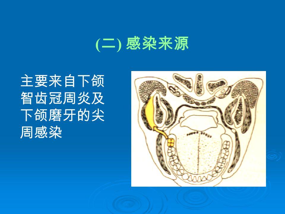 ( 二 ) 感染来源 主要来自下颌 智齿冠周炎及 下颌磨牙的尖 周感染