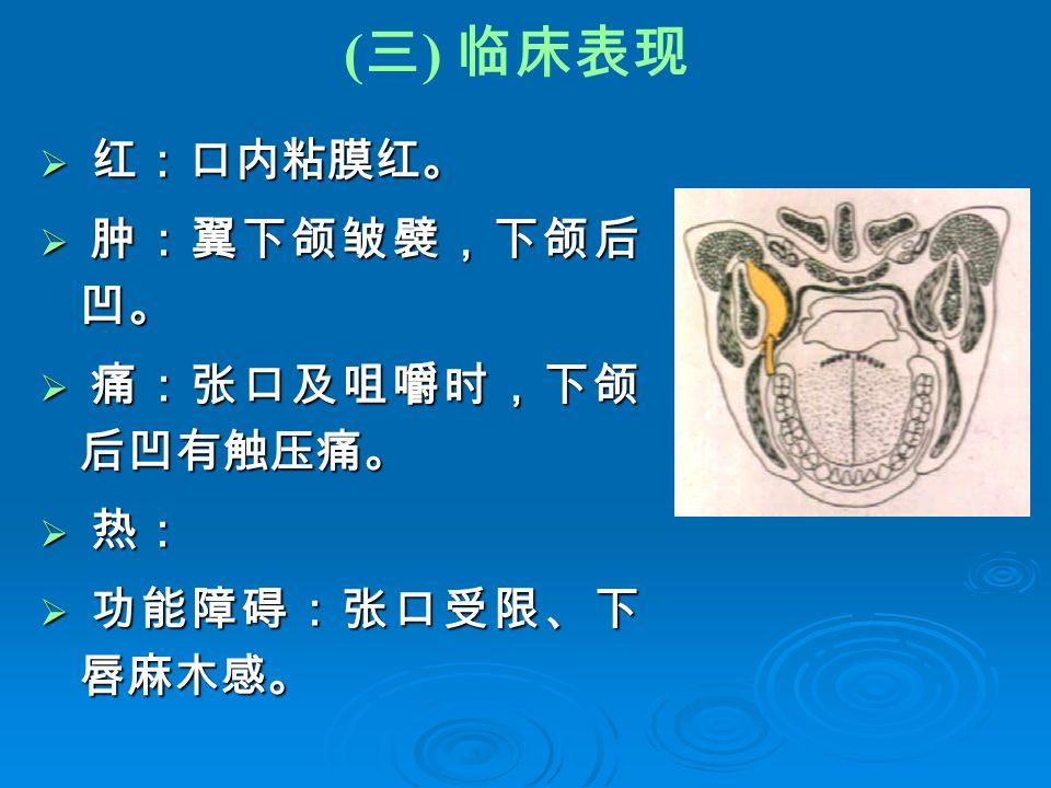 ( 三 ) 临床表现  红:口内粘膜红。  肿:翼下颌皱襞,下颌后 凹。  痛:张口及咀嚼时,下颌 后凹有触压痛。  热:  功能障碍:张口受限、下 唇麻木感。