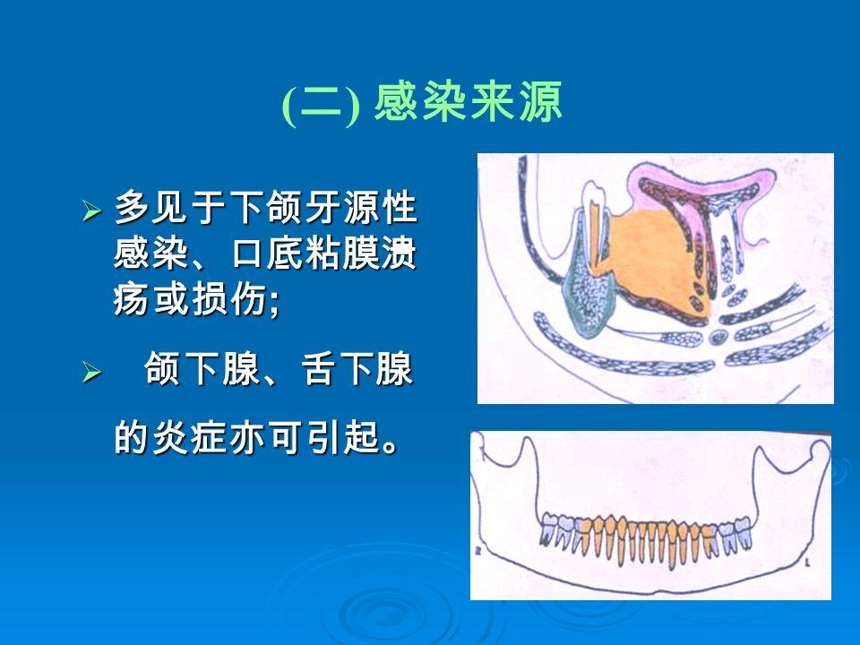 ( 二 ) 感染来源  多见于下颌牙源性 感染、口底粘膜溃 疡或损伤 ;  颌下腺、舌下腺 的炎症亦可引起。