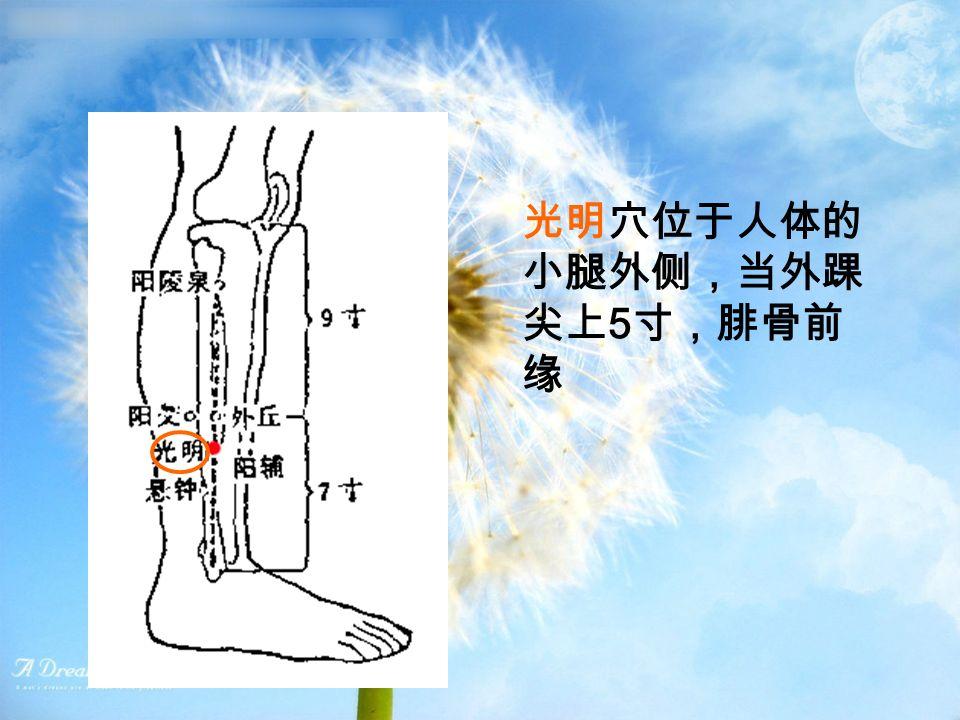 光明穴位于人体的 小腿外侧,当外踝 尖上 5 寸,腓骨前 缘