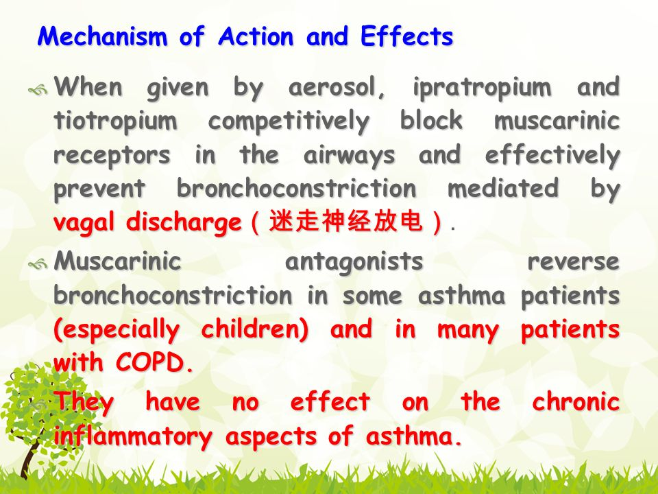 Mechanism of Action and Effects  When given by aerosol, ipratropium and tiotropium competitively block muscarinic receptors in the airways and effectively prevent bronchoconstriction mediated by vagal discharge (迷走神经放电)  When given by aerosol, ipratropium and tiotropium competitively block muscarinic receptors in the airways and effectively prevent bronchoconstriction mediated by vagal discharge (迷走神经放电).