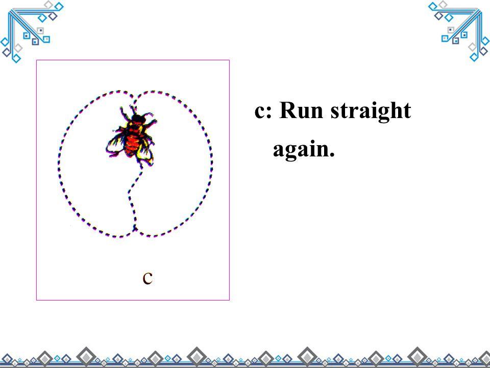 c: Run straight again.