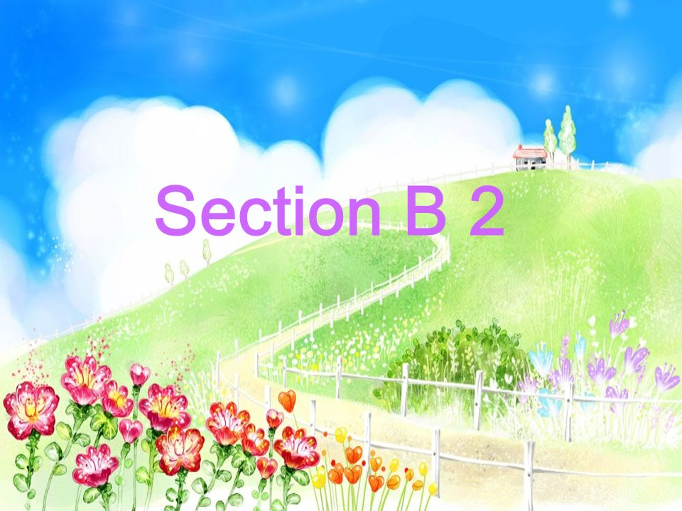 Section B 2