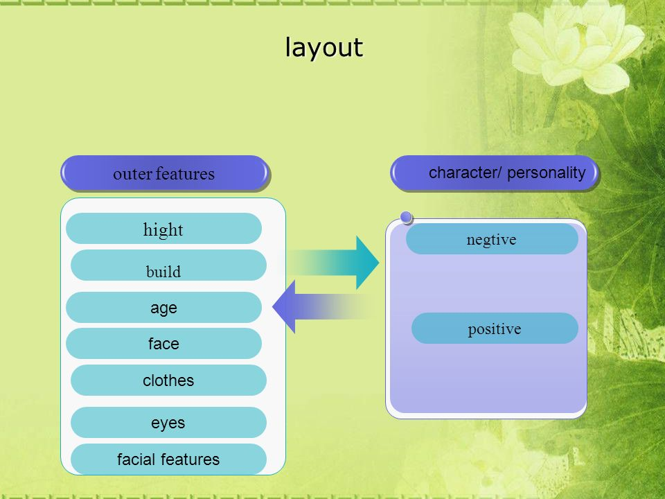 layout character/ personality hight build outer features negtive positive age face clothes eyes facial features