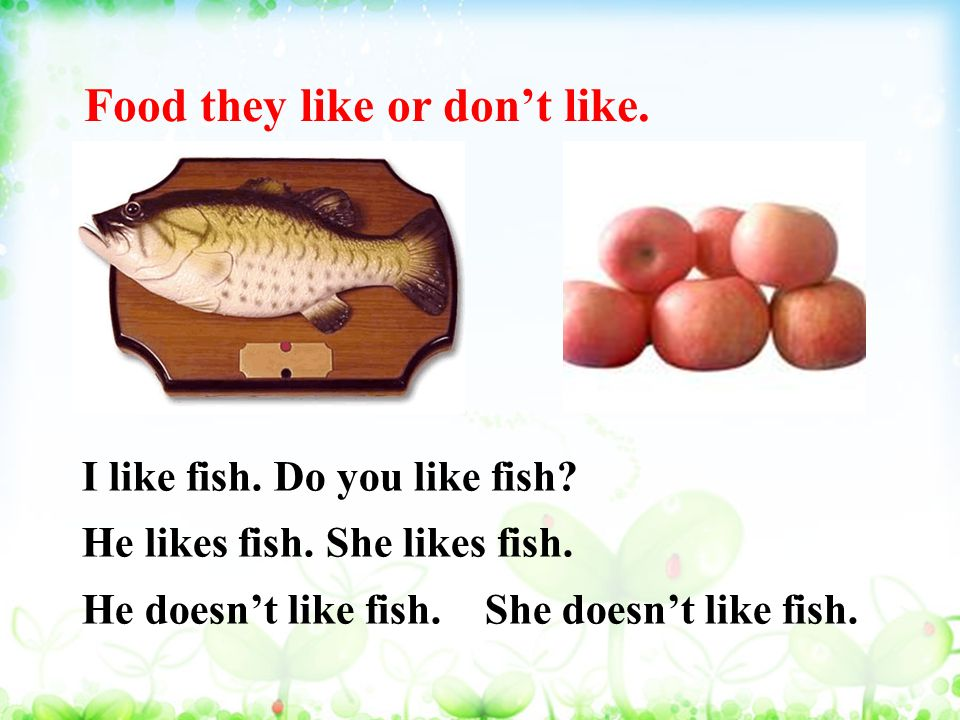 Food they like or don't like. I like fish. Do you like fish.