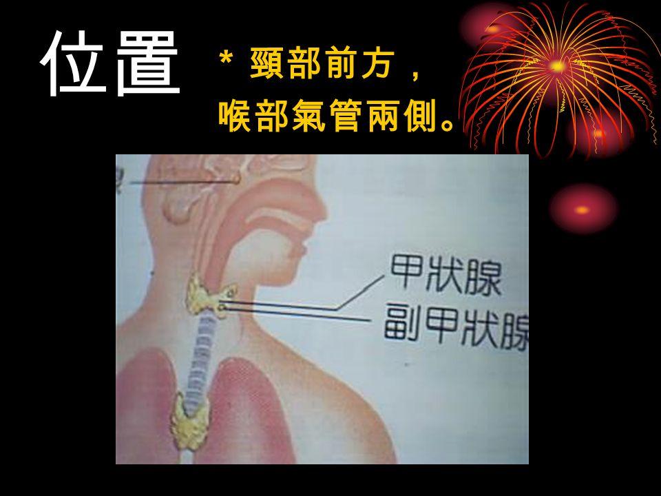 位置 * 頸部前方, 喉部氣管兩側。