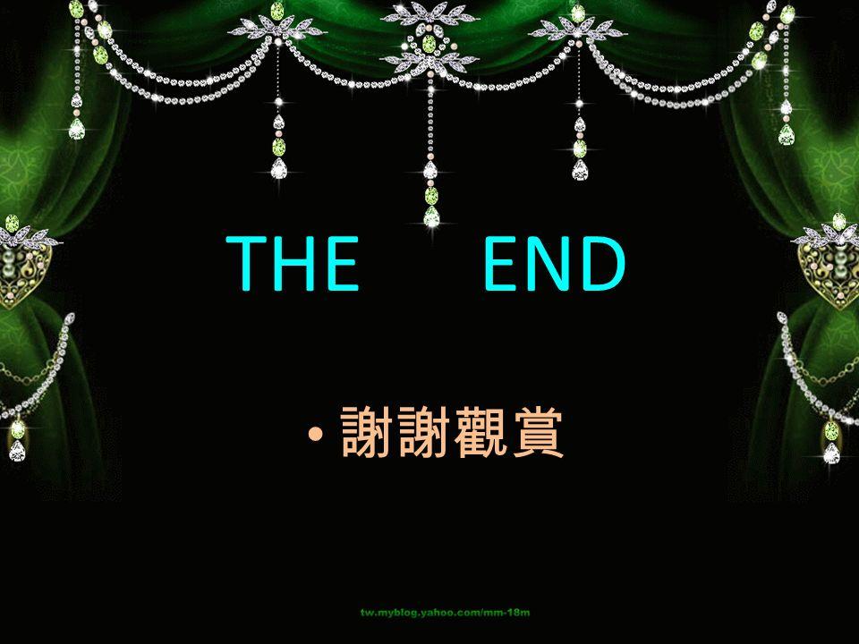 THE END 謝謝觀賞
