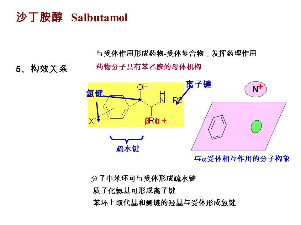 沙丁胺醇 Salbutamol 5 、构效关系 与受体作用形成药物 - 受体复合物,发挥药理作用 药物分子具有苯乙胺的母体机构 β α + 疏水键 离子键 氢键 分子中苯环可与受体形成疏水键 质子化氨基可形成离子键 苯环上取代基和侧链的羟基与受体形成氢键 与  受体相互作用的分子构象 N +