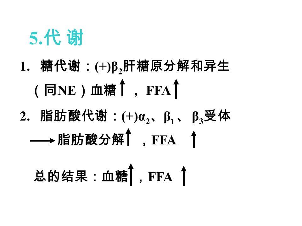 5. 代 谢 1. 糖代谢: (+)β 2 肝糖原分解和异生 (同 NE )血糖 , FFA 2.