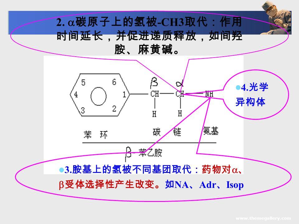 www.themegallery.com 2.  碳原子上的氢被 -CH3 取代:作用 时间延长,并促进递质释放,如间羟 胺、麻黄碱。 3.