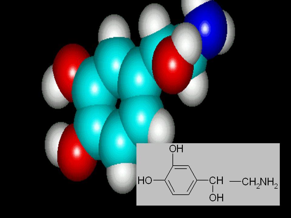 3. 氨基〔 -NH- 〕上的氢原子被不同基团取代 : 其取代基团从甲基到叔丁基,对 α 作用减弱, 对 β 受体作用逐渐增强,如 ADR 、 ISO 。