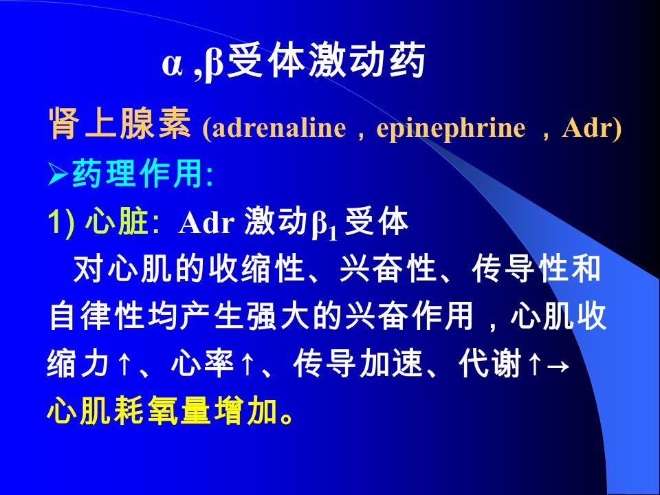 α,β 受体激动药 肾上腺素 (adrenaline , epinephrine , Adr)  药理作用 : 1) 心脏 : Adr 激动 β 1 受体 对心肌的收缩性、兴奋性、传导性和 自律性均产生强大的兴奋作用,心肌收 缩力 ↑ 、心率 ↑ 、传导加速、代谢 ↑→ 心肌耗氧量增加。