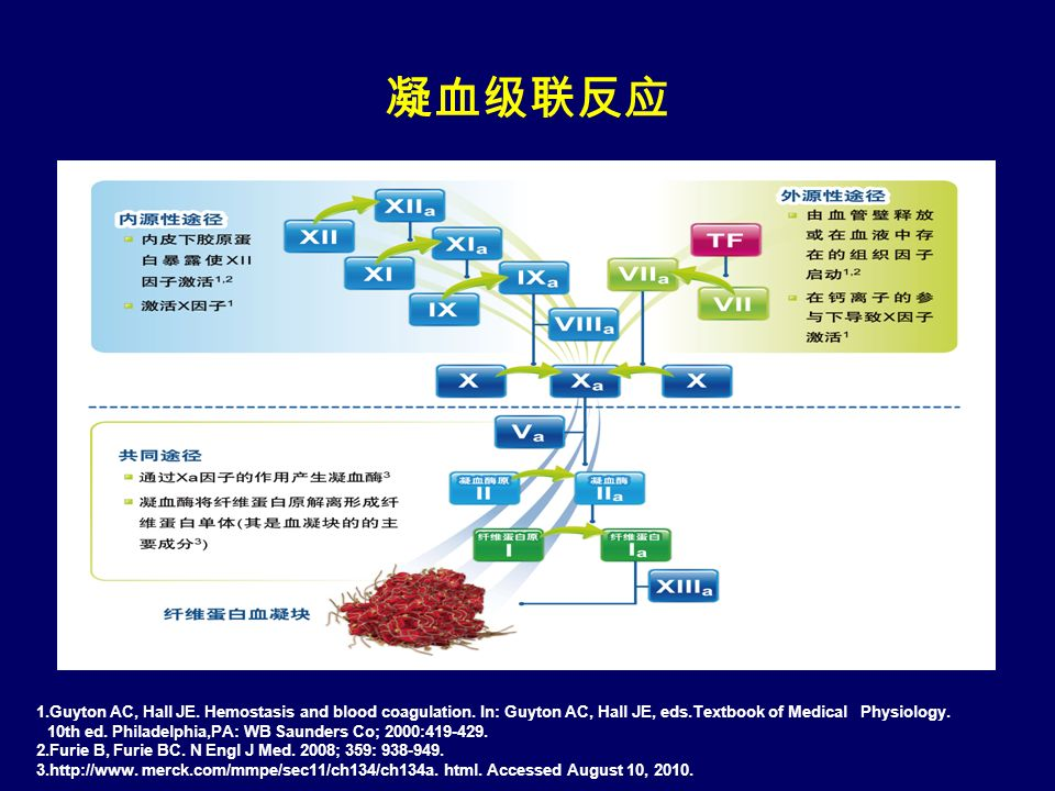 凝血级联反应 1.Guyton AC, Hall JE. Hemostasis and blood coagulation.
