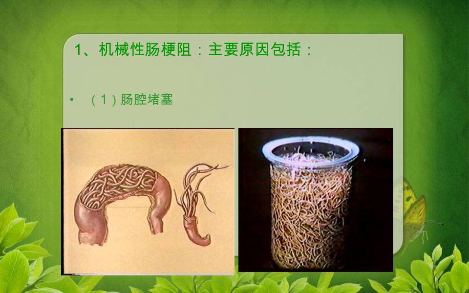1 、机械性肠梗阻:主要原因包括: ( 1 )肠腔堵塞