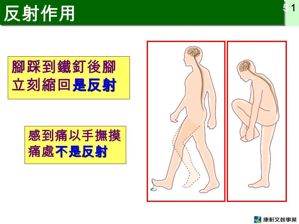 5 ˙ 1 反射作用 是反射 腳踩到鐵釘後腳 立刻縮回是反射 不是反射 感到痛以手撫摸 痛處不是反射