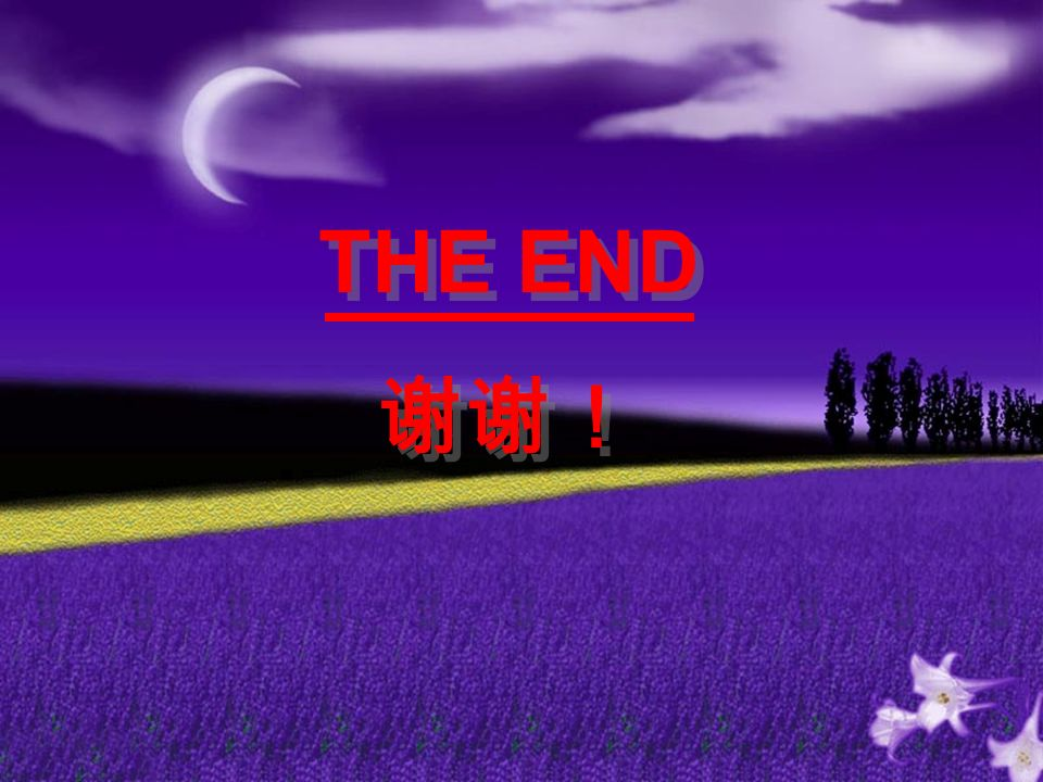 THE END 谢谢! THE END 谢谢!
