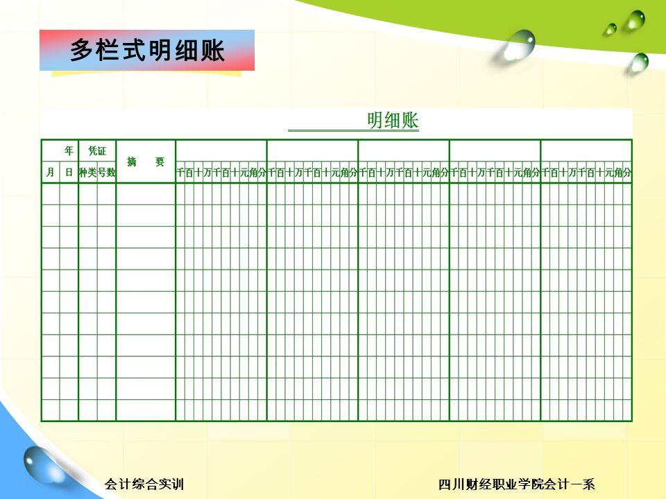 四川财经职业学院会计一系会计综合实训 多栏式明细账