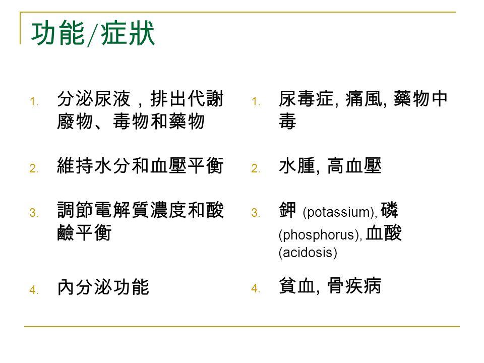功能 / 症狀 1. 分泌尿液,排出代謝 廢物、毒物和藥物 2. 維持水分和血壓平衡 3. 調節電解質濃度和酸 鹼平衡 4.
