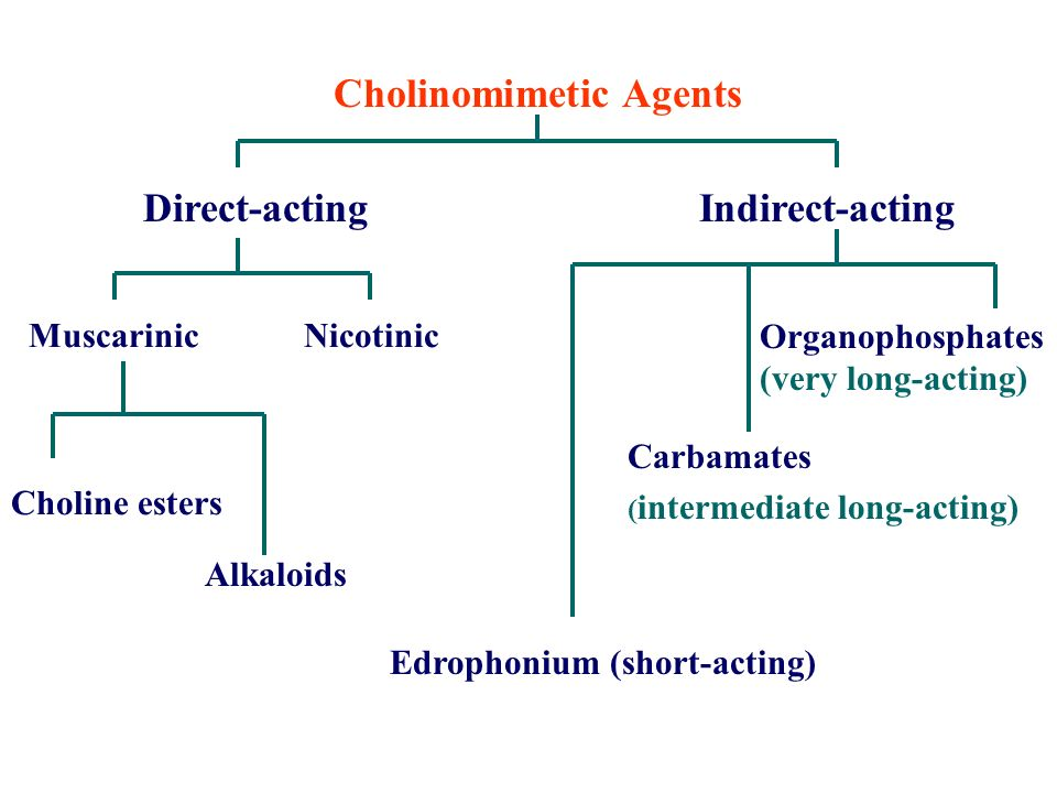 Cholinomimetic Agents Direct-acting Indirect-acting Muscarinic Nicotinic Choline esters Alkaloids Edrophonium (short-acting) Carbamates ( intermediate long-acting) Organophosphates (very long-acting)