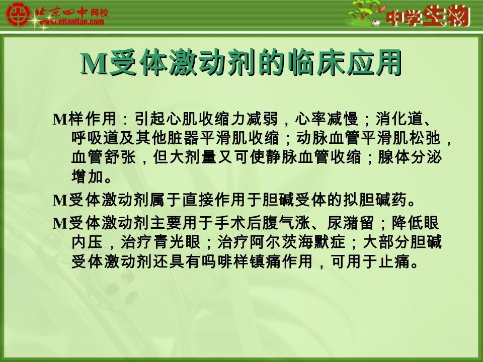 M 受体激动剂的临床应用 M 样作用:引起心肌收缩力减弱,心率减慢;消化道、 呼吸道及其他脏器平滑肌收缩;动脉血管平滑肌松弛, 血管舒张,但大剂量又可使静脉血管收缩;腺体分泌 增加。 M 受体激动剂属于直接作用于胆碱受体的拟胆碱药。 M 受体激动剂主要用于手术后腹气涨、尿潴留;降低眼 内压,治疗青光眼;治疗阿尔茨海默症;大部分胆碱 受体激动剂还具有吗啡样镇痛作用,可用于止痛。
