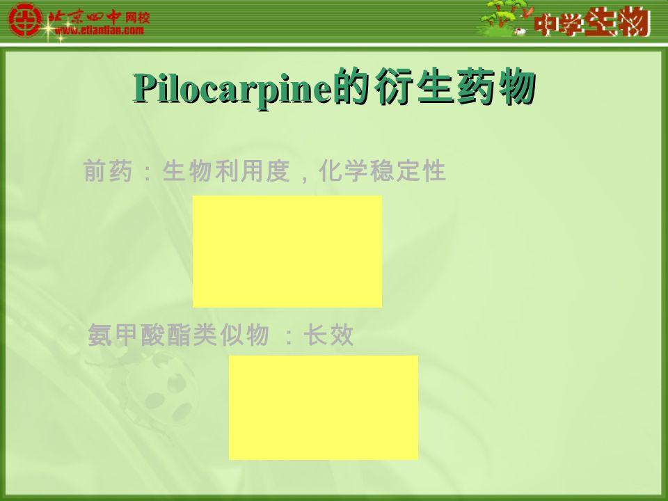 Pilocarpine 的衍生药物 前药:生物利用度,化学稳定性 氨甲酸酯类似物 :长效