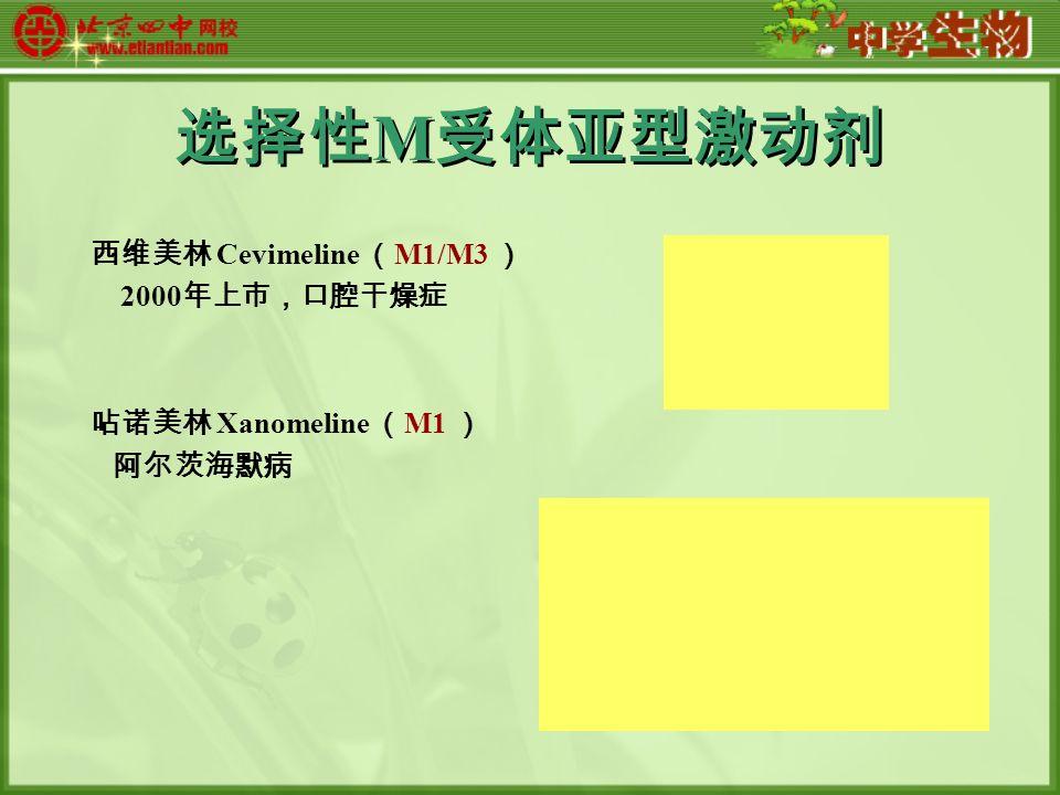 选择性 M 受体亚型激动剂 西维美林 Cevimeline ( M1/M3 ) 2000 年上市,口腔干燥症 呫诺美林 Xanomeline ( M1 ) 阿尔茨海默病