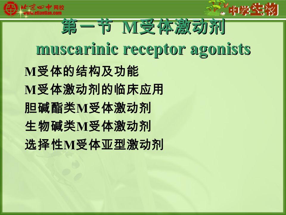 第一节 M 受体激动剂 muscarinic receptor agonists M 受体的结构及功能 M 受体激动剂的临床应用 胆碱酯类 M 受体激动剂 生物碱类 M 受体激动剂 选择性 M 受体亚型激动剂