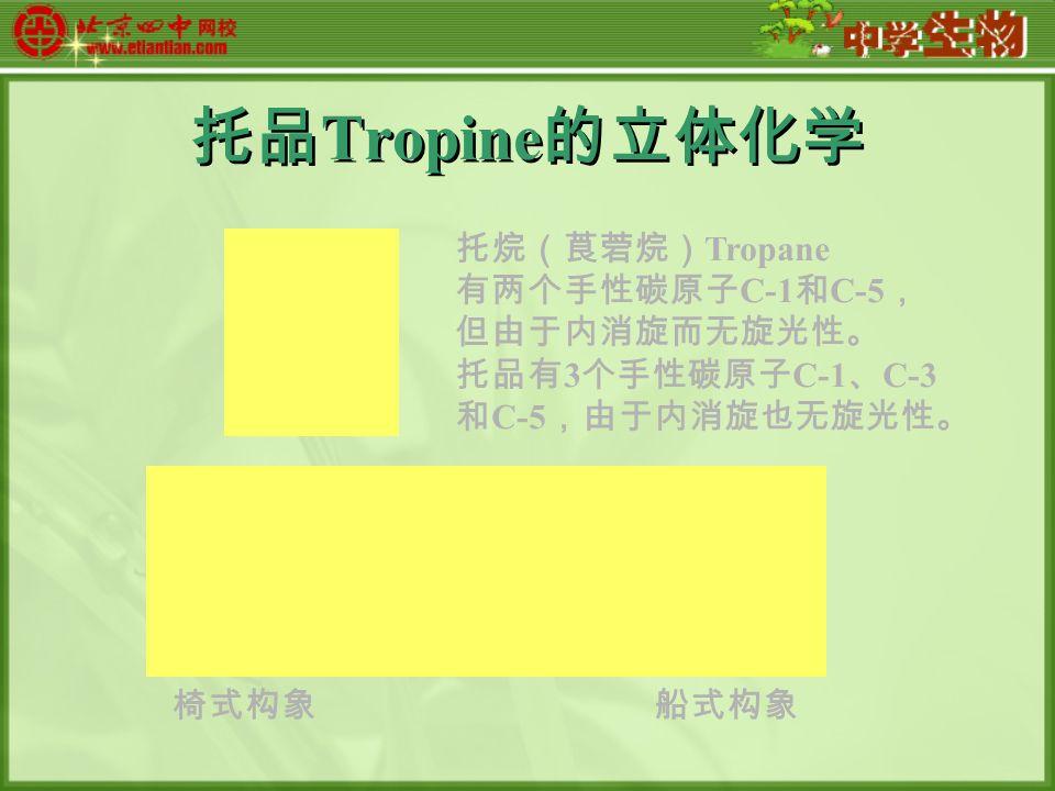 托品 Tropine 的立体化学 椅式构象船式构象 托烷(莨菪烷) Tropane 有两个手性碳原子 C-1 和 C-5 , 但由于内消旋而无旋光性。 托品有 3 个手性碳原子 C-1 、 C-3 和 C-5 ,由于内消旋也无旋光性。