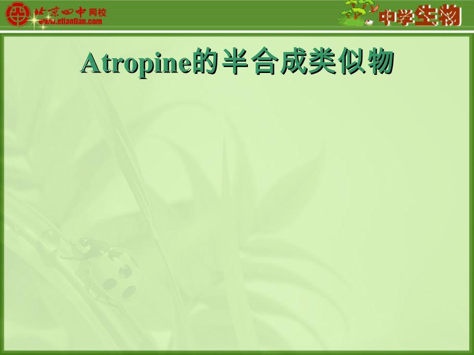 Atropine 的半合成类似物