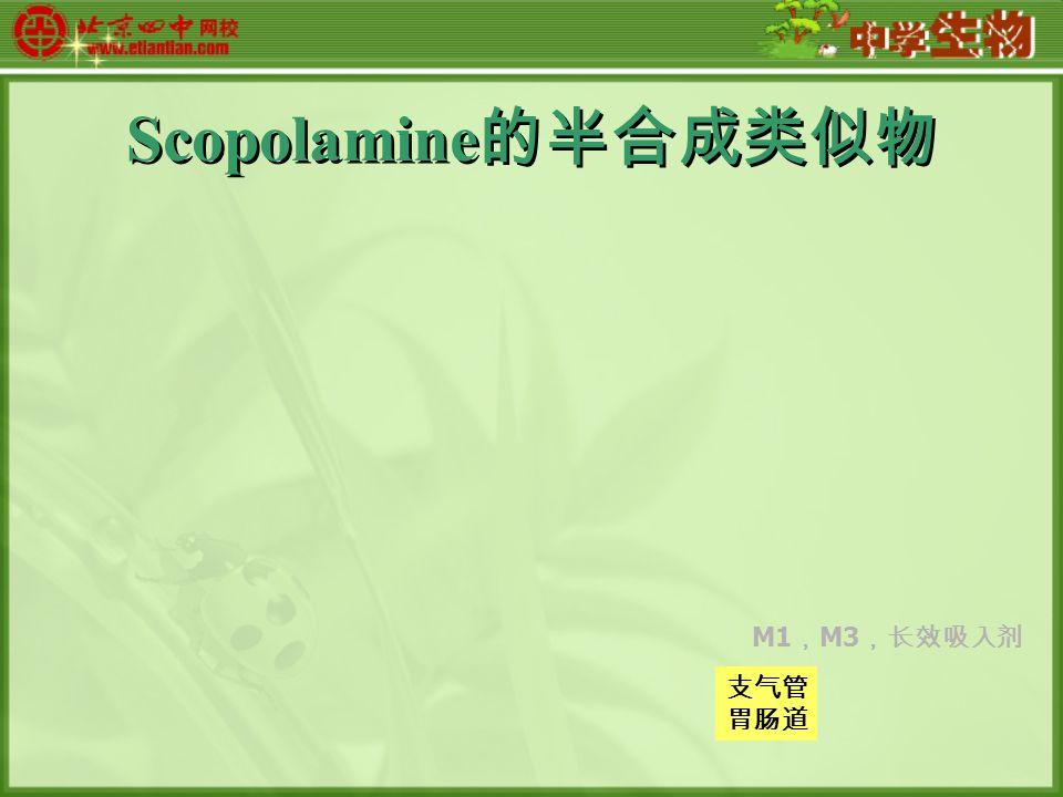 Scopolamine 的半合成类似物 支气管 胃肠道 M1 , M3 ,长效吸入剂
