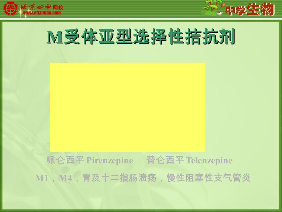 M 受体亚型选择性拮抗剂 哌仑西平 Pirenzepine 替仑西平 Telenzepine M1 , M4 ,胃及十二指肠溃疡,慢性阻塞性支气管炎