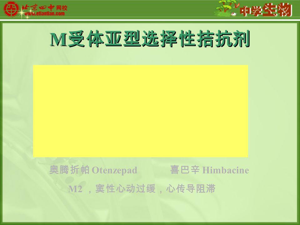 M 受体亚型选择性拮抗剂 奥腾折帕 Otenzepad 喜巴辛 Himbacine M2 ,窦性心动过缓,心传导阻滞
