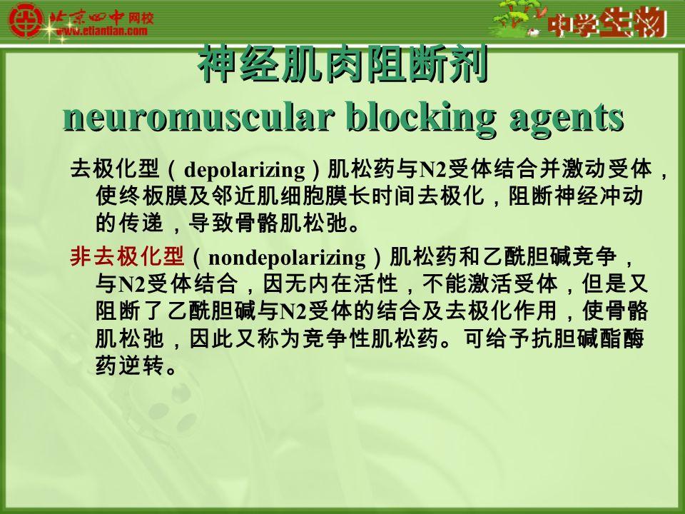 神经肌肉阻断剂 neuromuscular blocking agents 去极化型( depolarizing )肌松药与 N2 受体结合并激动受体, 使终板膜及邻近肌细胞膜长时间去极化,阻断神经冲动 的传递,导致骨骼肌松弛。 非去极化型( nondepolarizing )肌松药和乙酰胆碱竞争, 与 N2 受体结合,因无内在活性,不能激活受体,但是又 阻断了乙酰胆碱与 N2 受体的结合及去极化作用,使骨骼 肌松弛,因此又称为竞争性肌松药。可给予抗胆碱酯酶 药逆转。