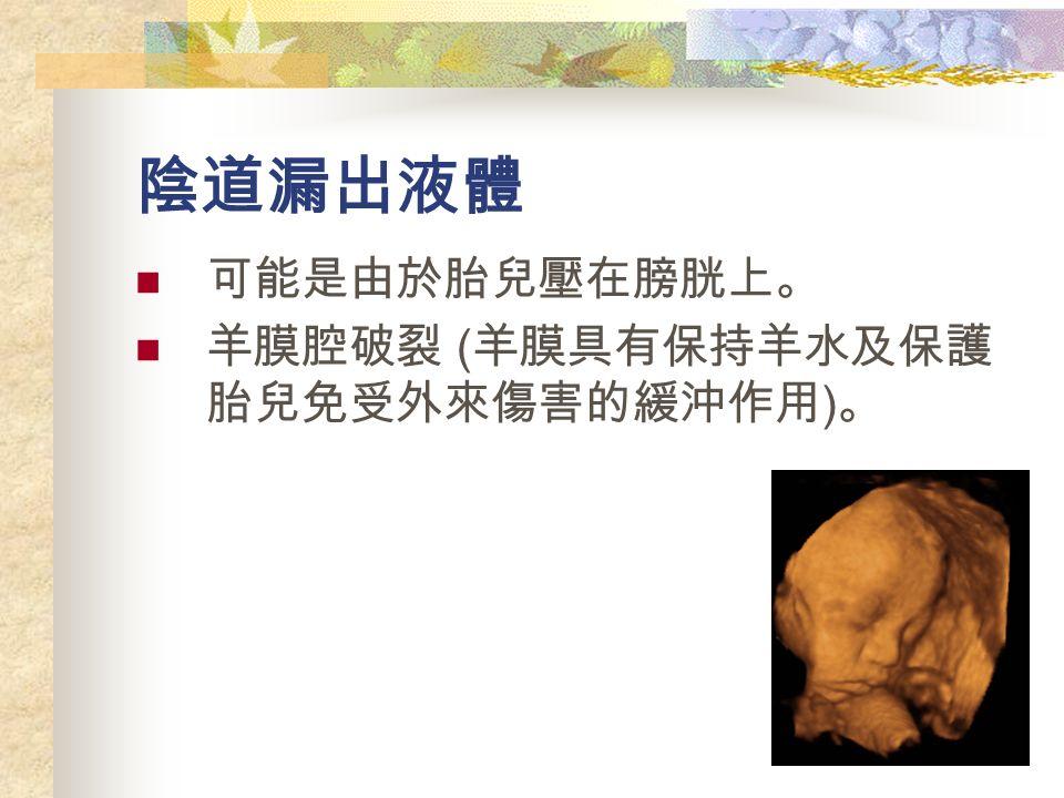 陰道漏出液體 可能是由於胎兒壓在膀胱上。 羊膜腔破裂 ( 羊膜具有保持羊水及保護 胎兒免受外來傷害的緩沖作用 ) 。