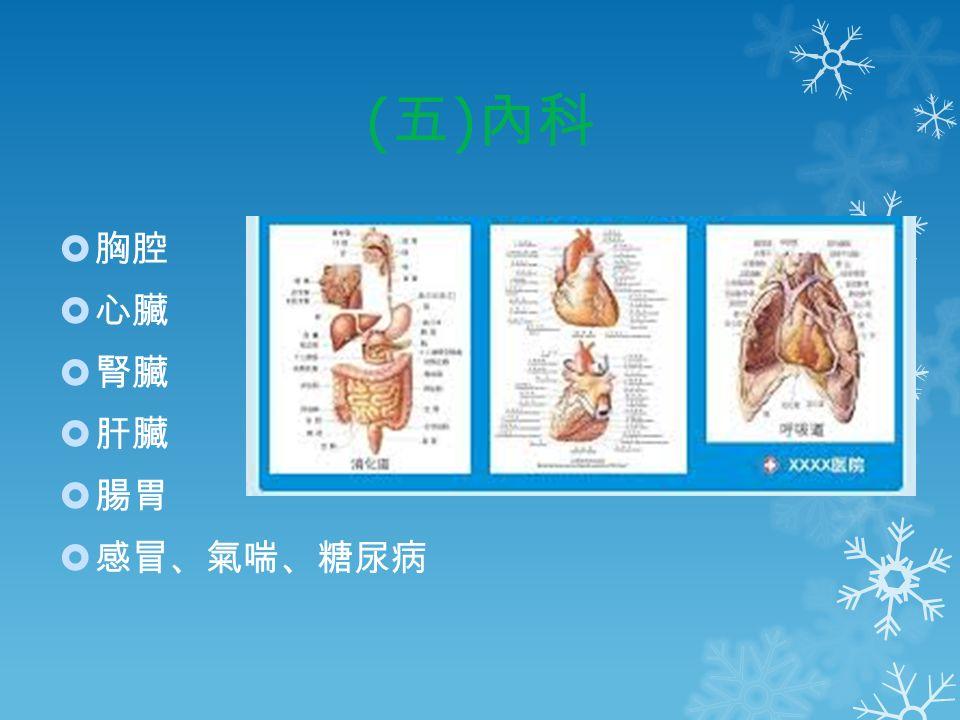 ( 五 ) 內科  胸腔  心臟  腎臟  肝臟  腸胃  感冒、氣喘、糖尿病